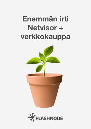Netvisor-opas